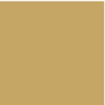 RAL 1002 Sand Yellow colour swatch